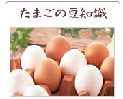卵と体の関係 part3